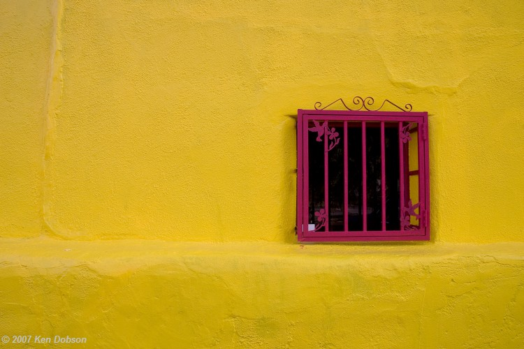 Fuschia Window