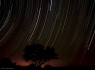 Star Trails of Lochiel